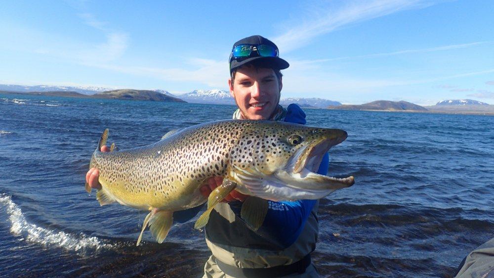 En Islande, Luc Malbois a réussi à pêcher d'impressionnantes truites, les fameuses Ice Age Brown Trout.