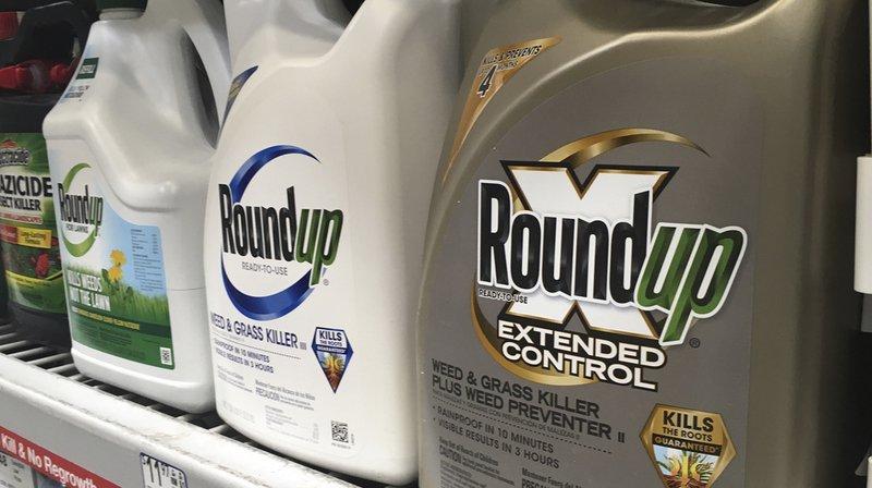 Procès Roundup: Monsanto condamné à payer près de 81 millions à un Américain souffrant d'un cancer