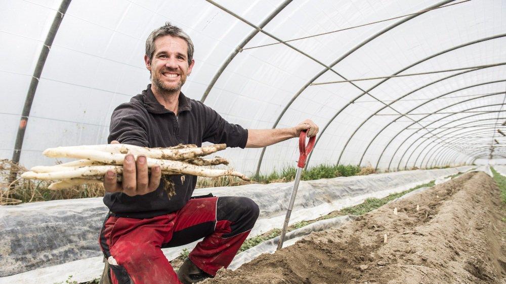 Benoît Leemann et l'un des 35 producteurs d'asperges de ce canton heureux de pouvoir enfin récolter cette ambassadrice inimitable de l'agriculture valaisanne. .