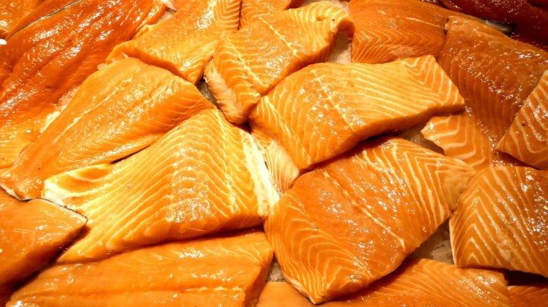 Le Canada autorise la production de saumon génétiquement modifié sur son territoire