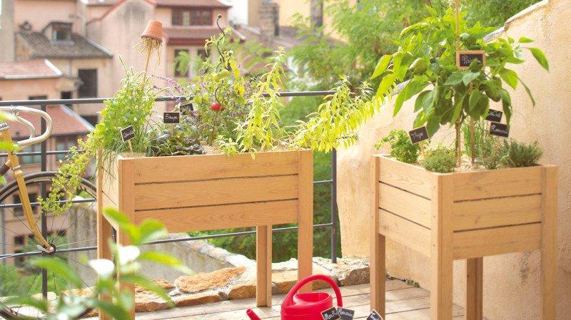 Magazine «Spécial Habitat»: quel potager aménager chez soi?