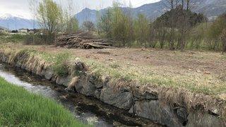 Granges: les coupes d'arbres le long du canal de la Rèche interpellent les promeneurs