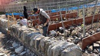Les civilistes engagés dans la réhabilitation de murs en pierres sèches dans le vignoble de Martigny