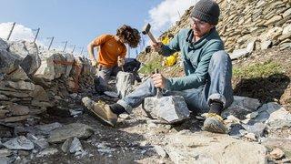 La Fondation Actions Environnement réhabilite des murs de pierres sèches dans les vignes de Martigny