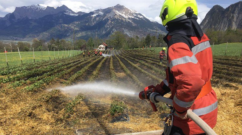 Les pompiers ont pu éteindre le sinistre au bout d'une heure.