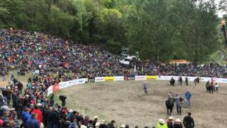 Sion: 12 000 personnes et un bénéfice à six chiffres pour la finale nationale de la race d'Hérens