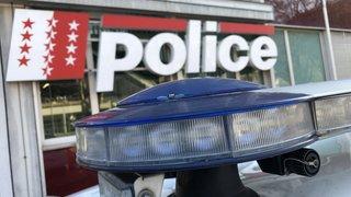 Saxon: arrestation mouvementée d'un cambrioleur présumé