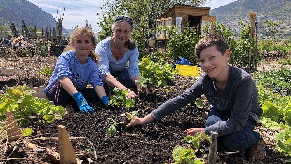 Abigaël et son camarade de classe Yanick cultivent le jardin Mapuchè sous l'œil attentif de Béatrice Peronetti, enseignante et propriétaire du terrain.