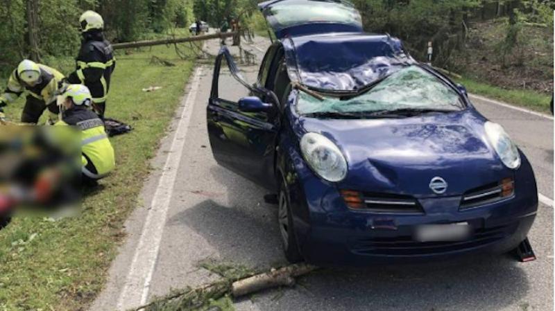 Fribourg: le vent fait un mort et un blessé grave près de Morat