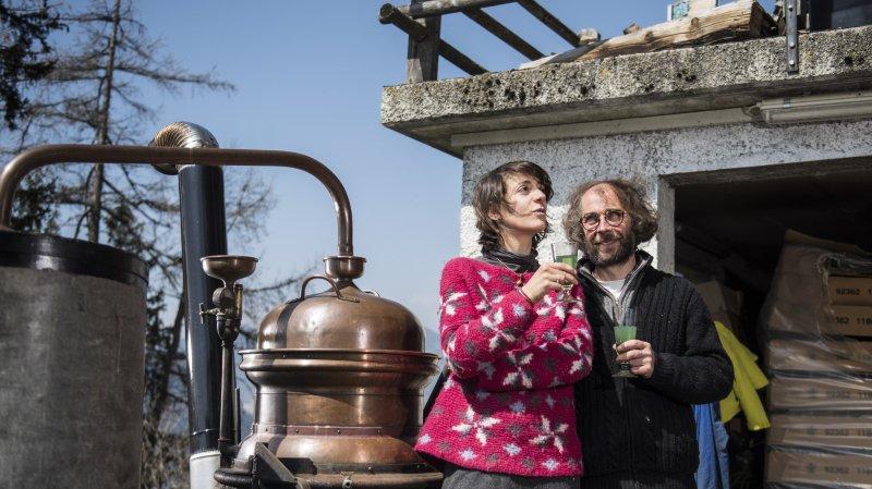Les distillateurs de l'absolu à Sarreyer
