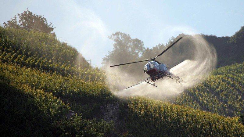 Traitements par hélicoptère et agriculture biologique sont compatibles