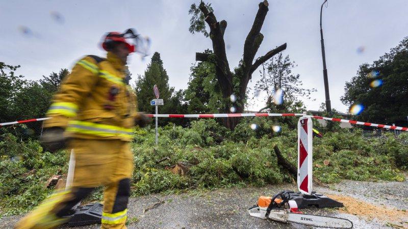 Les pompiers genevois ont procédé à plus de 500 interventions durant la nuti de samedi à dimanche, après le violent orage.