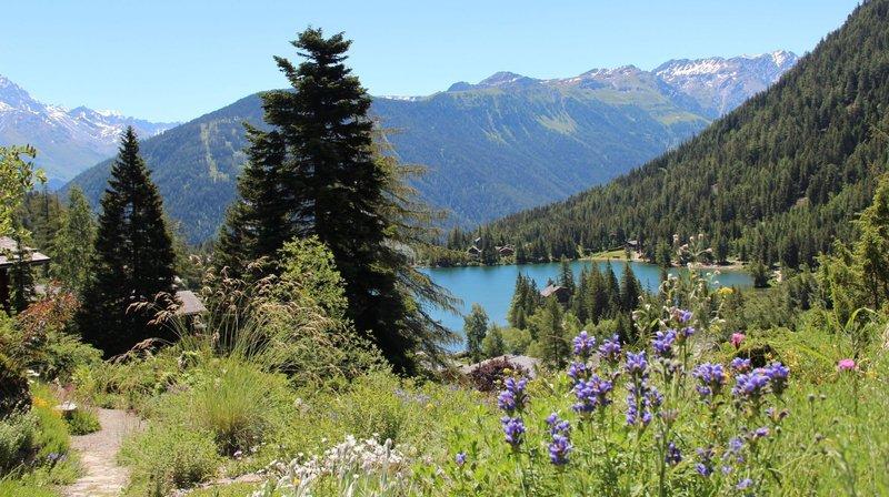 L'avenir de nos forêts en question ce week-end au jardin Flore-Alpe de Champex-Lac