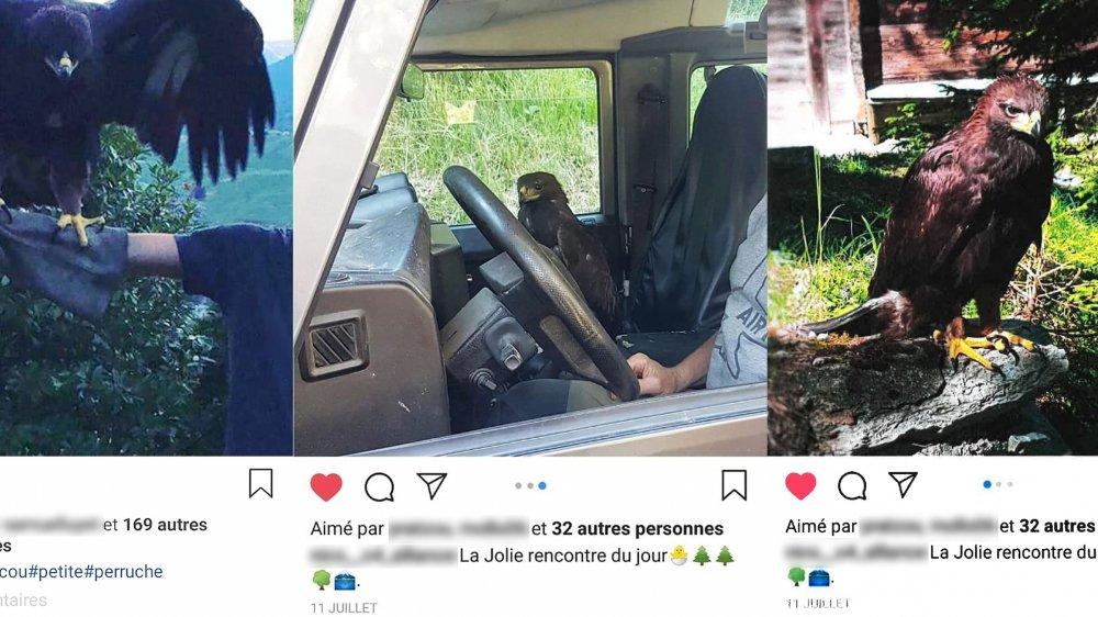 Ces photos ont été publiées sur les réseaux sociaux par des membres de l'entourage du garde-chasse, durant l'été 2018.