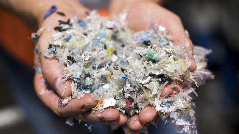Si la plupart des matières plastiques sont recyclées ou brûlées, on en retrouve tout de même plusieurs milliers de tonnes dans la nature (illustration).