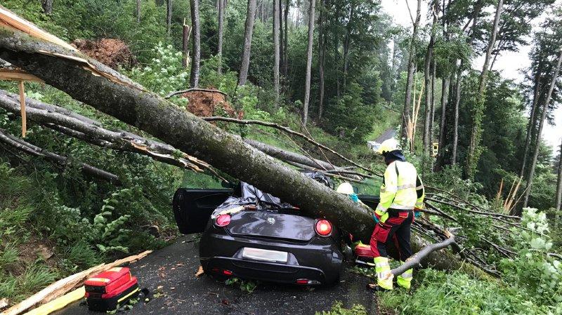 Dans le village d'Alpnach (OW), plusieurs arbres sont tombés sur un véhicule. Ses occupants sont restés coincés dans la voiture et ont dû être désincarcérés.