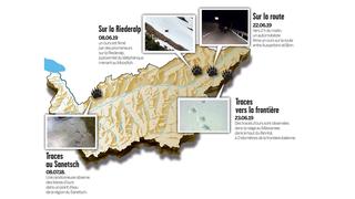 Ours en Valais: sa trace se perd à 2 kilomètres de la frontière italienne