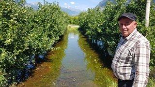 Sierre: polémique autour de l'inondation de six hectares de vergers à Pramont