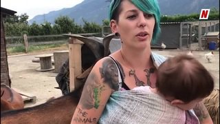 Valais: après la boîte à bébé, voici la boîte pour recueillir les animaux abandonnés