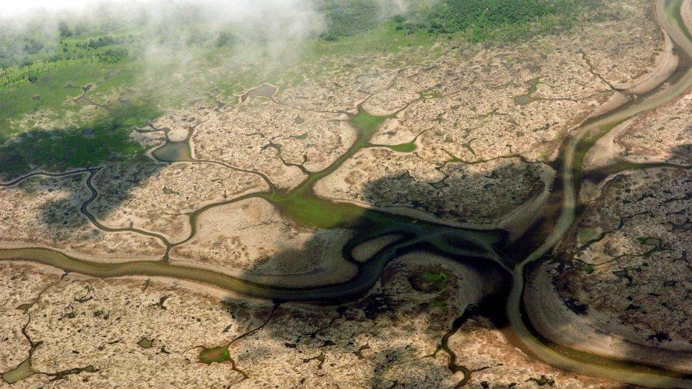L'Amazonie est dans le viseur de Bolsonaro