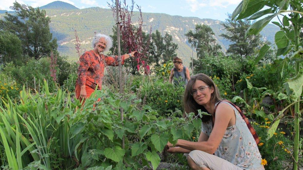 Alexine Rogers (au premier plan) et Marie Crettol (en orange) au cœur du jardin des buttes, où fleurs, fruits et légumes poussent à foison.