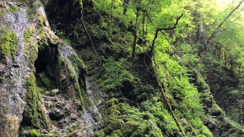 Les gorges de l'Hongrin se trouvent à Montbovon, dans le canton de Fribourg.