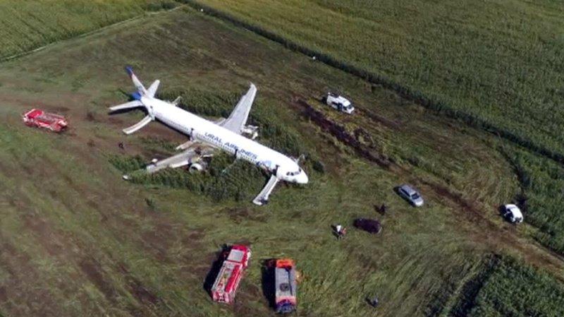 L'avion a effectué jeudi un atterrissage d'urgence spectaculaire dans un champ de maïs avec 233 personnes à son bord, après avoir percuté une volée d'oiseaux.
