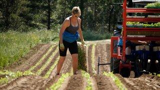 La Valaisanne Magaly Jacquemettaz est l'ambassadrice de la diversité paysanne