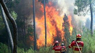 Portugal: attisés par les vents, les incendies ont repris