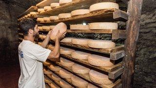 Valais: un projet transfrontalier pour valoriser les fromages d'alpage
