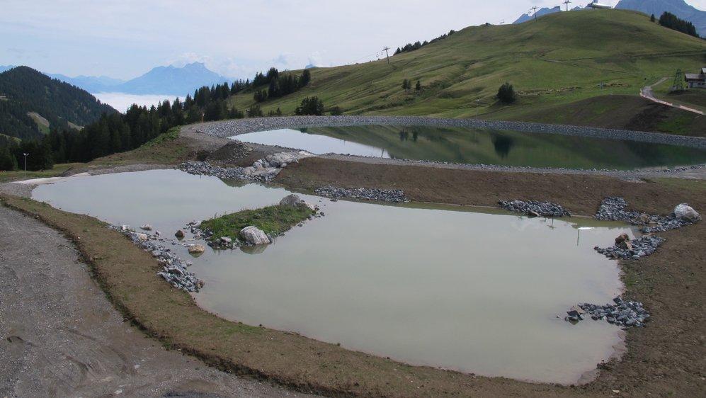 Le réservoir pour canons à neige de 100'000 m3 (au deuxième plan) ayant détruit deux anciennes gouilles, un nouveau biotope humide a été créé pour les batraciens et la flore aquatique. Il servira aussi de lieu de détente.