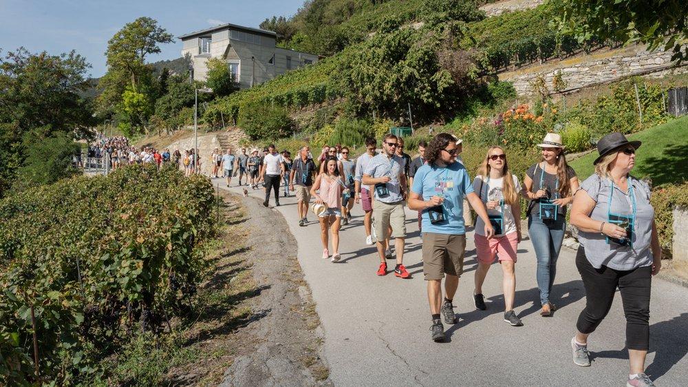 Entre Sierre et Salquenen, une marche au paradis vinicole
