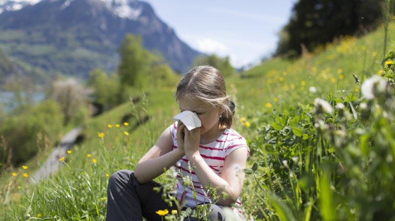 La saison des pollens est terminée: le rhume des foins ne vous embêtera plus cette année