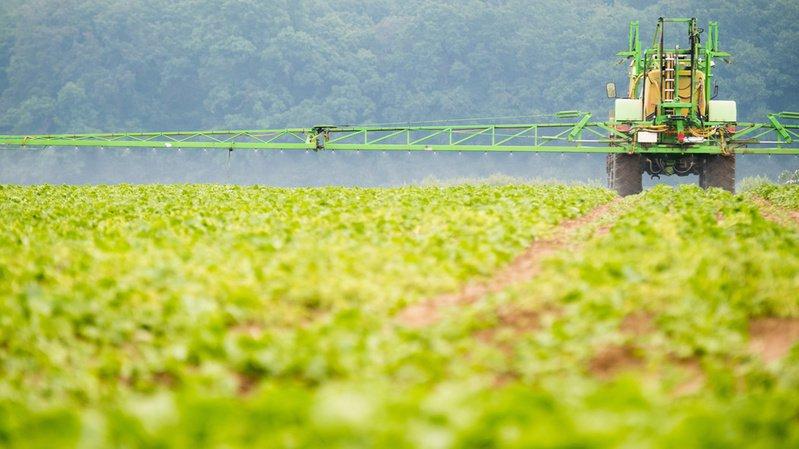 En 2020 déjà, les agriculteurs allemands pourront moins épandre du glyphosate sur leurs cultures. (Illustration)
