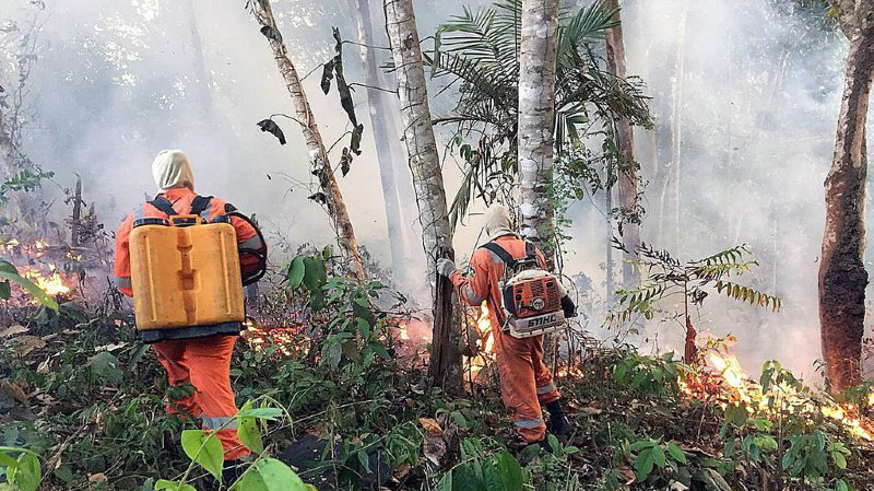 Amazonie: l'Irlande votera contre le traité de libre-échange si le Brésil ne protège pas sa forêt