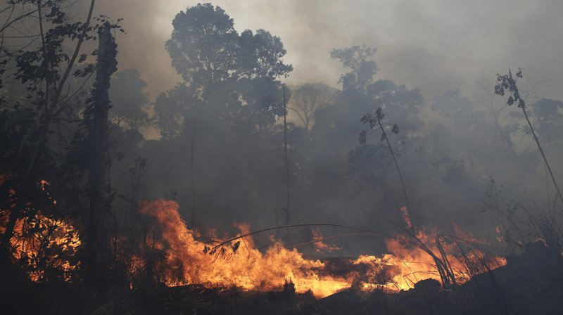 Le Brésil «ouvert» à une aide de l'étranger pour combattre les feux de forêt en Amazonie