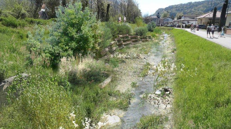 Massongex: lancement des travaux de sécurisation de la digue du Rhône