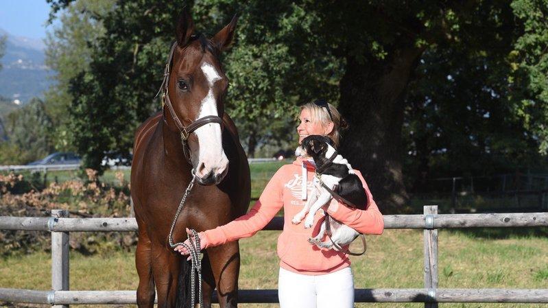 Hippisme: Delphine Skrzat, une vie dédiée au cheval