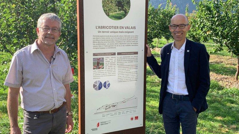 Le directeur de l'Ecole d'agriculture du Valais, Guy Bianco, et le chef du Service de l'agriculture, Gérald Dayer, devant l'un des 18 panneaux qui balisent le nouveau sentier didactique tracé autour du site de Châteauneuf.