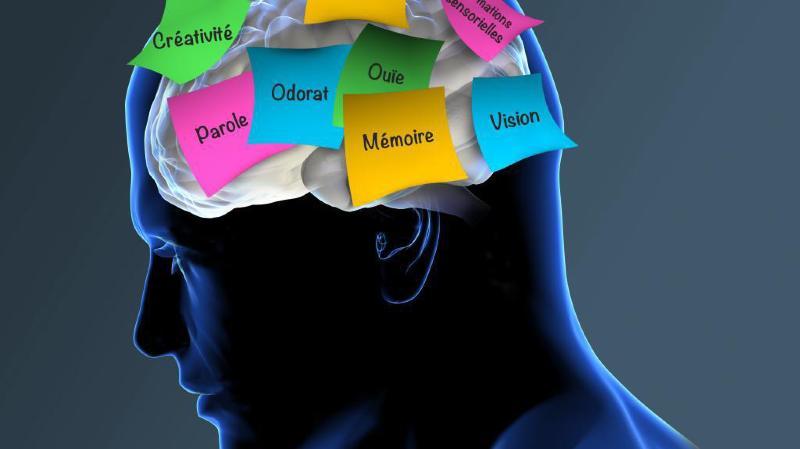 La maladie d'Alzheimer touche plus de 6000 Valaisans.