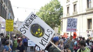 """Agrochimie: Syngenta appelé à bannir ses pesticides """"les plus toxiques"""""""
