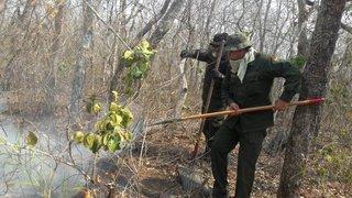 Amazonie: les feux de forêt touchent aussi le Paraguay et la Bolivie