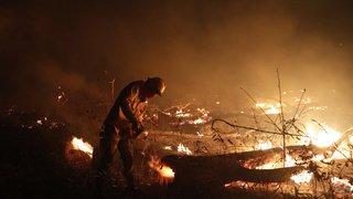Amazonie: quatre millions d'hectares dévastés par les incendies en Bolivie