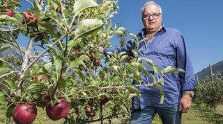 Xavier Moret: «Ces pommes sont brunes à l'intérieur…»