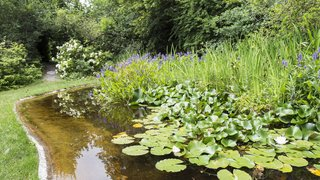 Un jardin d'Eden à Saint-Triphon