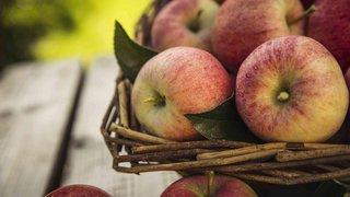 Valais: la saison de la pomme est lancée dans la morosité