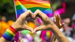 Les mêmes droits pour tous les couples: Smartvote décortique l'avis des partis valaisans