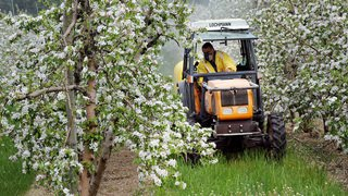 Pesticides: comment le Valais a fait la sourde oreille pendant une décennie