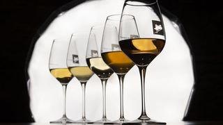 Naissance d'un vin orange…