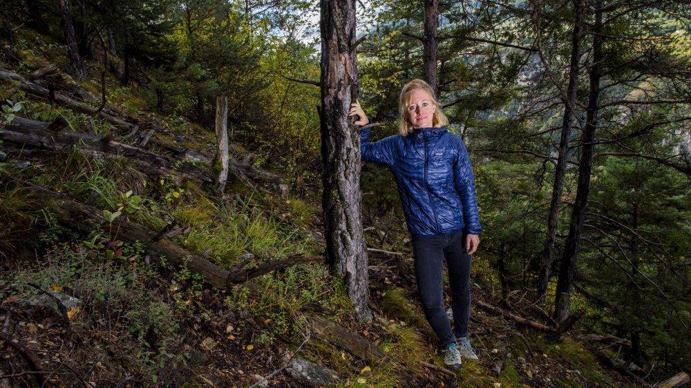 Postdoctorante au CIRM, Christine Moos nous emmène au-dessus de Bramois dans une zone où les pins émettent des signes de fatigue à la suite de la sécheresse. Si la forêt de protection est encore assez dense, à terme, une mortalité élevée des arbres due au stress hydrique peut poser des problèmes de sécurité.